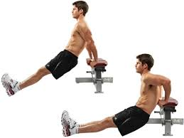 .circuit training Bench Dips